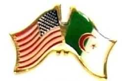 USA ALGERIA - 12 WORLD FLAG FRIENDSHIP LAPEL PINS ec005