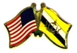 USA BRUNEI - 12 WORLD FLAG FRIENDSHIP LAPEL PINS ec039 - $18.00