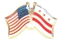 USA WASHINGTON DC - 12 state flag friendship pins ec509