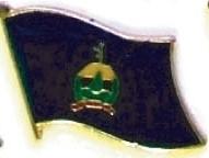 VERMONT - Wholesale lot 12 state flag lapel pins ep546