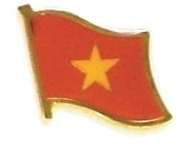 VIETNAM - Wholesale lot of 12 flag hat lapel pins ef253