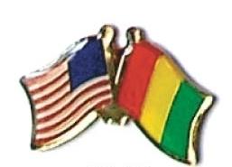 USA / GUINEA - 12 WORLD FLAG FRIENDSHIP PINS ec100