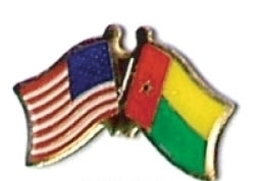 Usa / Guinea Bissau 12 World Flag Friendship Pins ec101 - $18.00