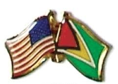 USA / GUYANA - 12 WORLD FLAG FRIENDSHIP PINS ec102
