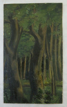 Painting Antique landscape Woody Trees Woods Forest Green Painting oil BM43 - $155.52