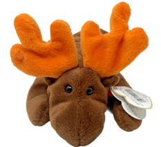 Ty Beanie Babies Plush Brown Chocolate MOOSE 9 inch Stuffed Animal Toy - £7.99 GBP