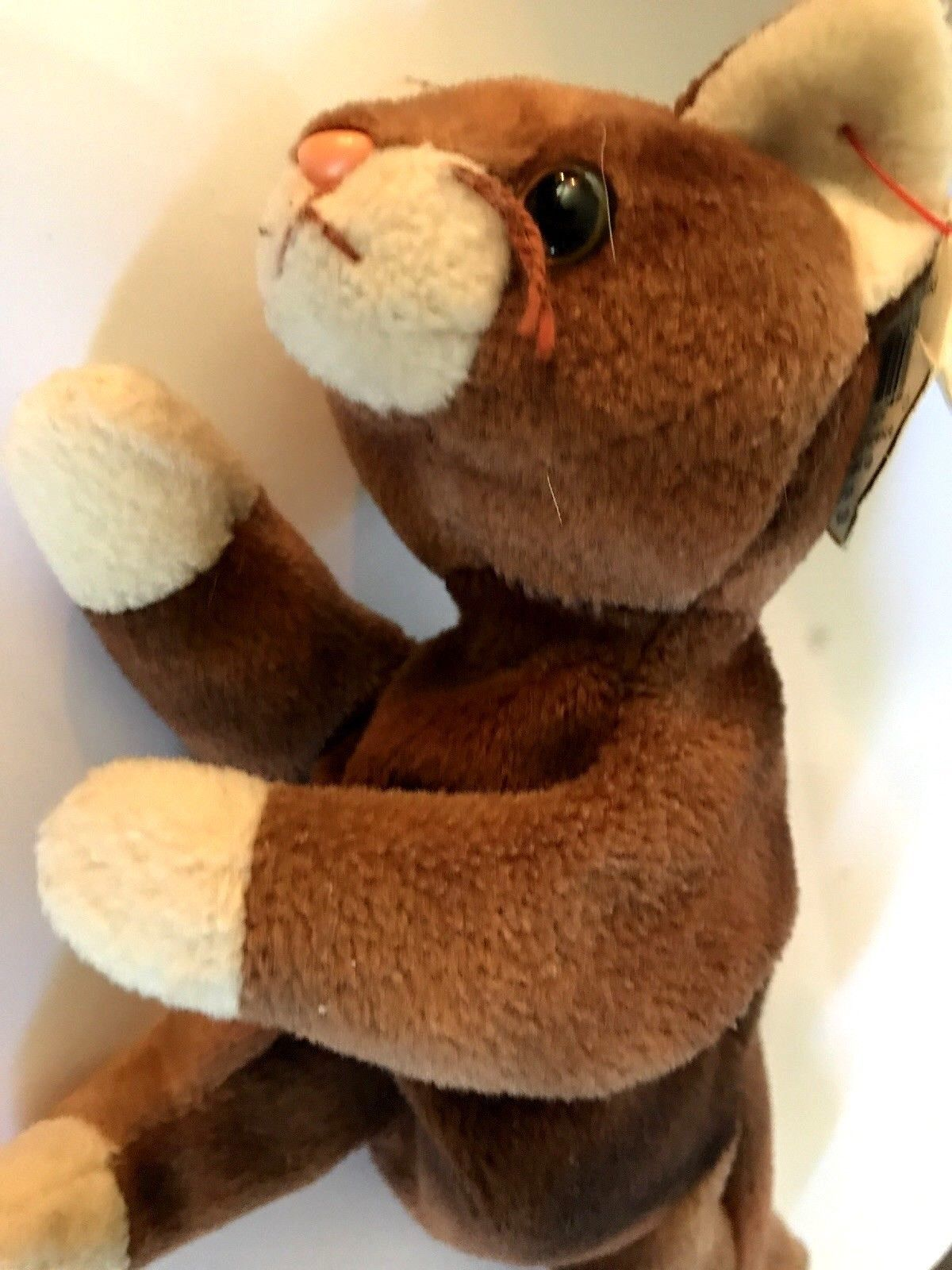 TY Beanie Baby - POUNCE the Cat (8 inch) and 50 similar items