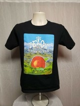 2013 The Peach Music Festival Montage Mountain Adult Small Black TShirt - $19.80