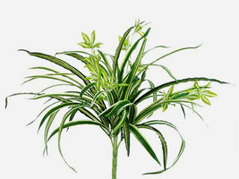 Green Caladium Bush Home Office Centerpieces Decoration Artificial Plants Pink