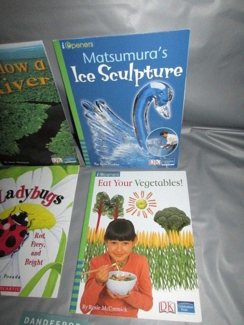 4 iopeners & Scholastic DK Children's Books 2004-2005