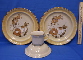 Baroque Autumn Fair Stoneware Plate Bowl & Cup Brown Flower Japan Lot of 4 - $19.79