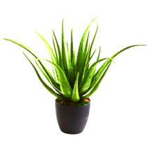 Aloe Artificial Plant - $91.78
