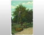 Postcard11a thumb155 crop