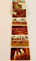 Vintage 1972 Busch Gardens Tampa Florida souvenir color card photo booklet - $7.87