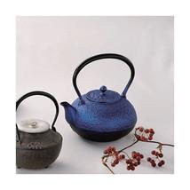 Nanbu Tetsubin - Lapis lazuli - 1.2 L - Japanese cast iron teapot kettle... - $568.88