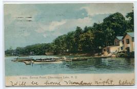 Bemus Point Chautauqua Lake New York 1906 postcard - $6.93