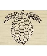 A Muse Artstamps Elegant Pinecone Rubber Stamp - $7.99