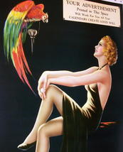 Barclay Grubben Pin Up Gal,Perched Parrot Lrg Vintage 1938 Unused Poster Print image 2