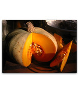 10 Sweet Meat Squash 2019 (all non-gmo heirloom vegetable seeds!) - $5.92
