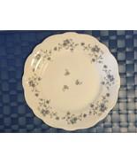 Johann Haviland China Blue Garland Pattern Bavaria Germany *CHOICE 1 PC*... - $4.75+