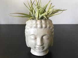 Concrete Buddha Planter - Candleholder- Zen Decor - $24.00