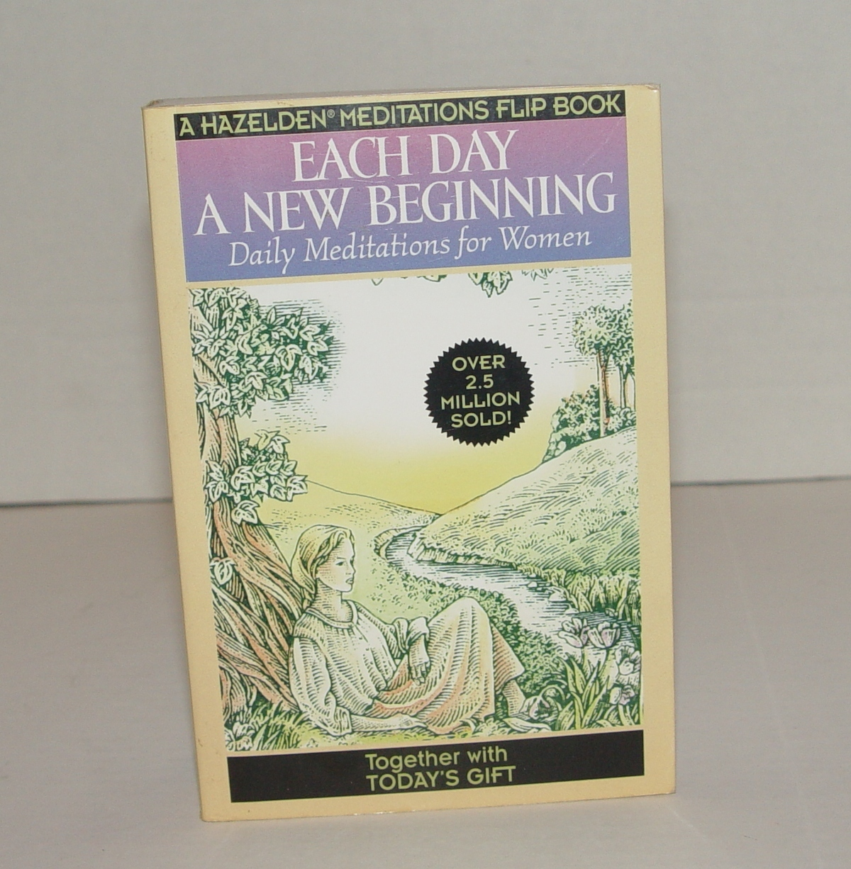 Primary image for Each Day a New Beginning by Hazelden Publishing : A Special Ed of Two Books NEW