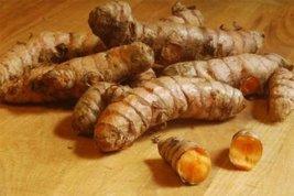 8 Live Roots of Turmeric (Curcuma Longa) To Plant Or Eat - $28.71
