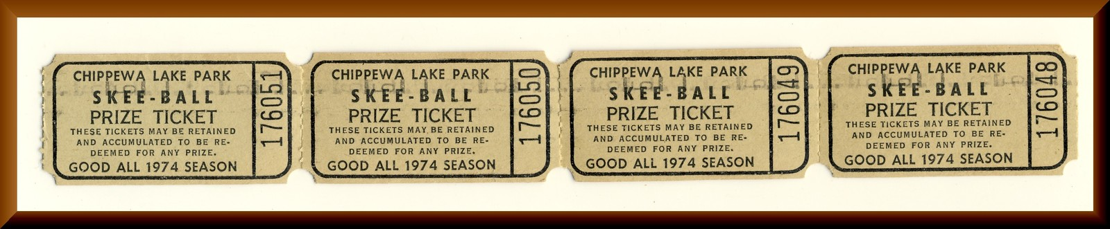 Chippewa lake park tickets 4
