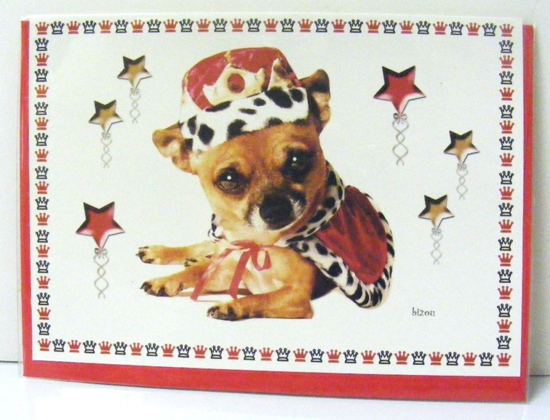 Primary image for 5 CHIHUAHUA DOG LEOPARD FUR GREETING CARDS NEW BLANK