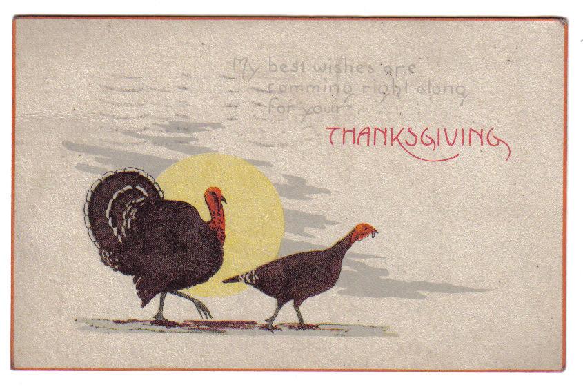 Vintage Thanksgiving Postcard Series No 80 Turkeys