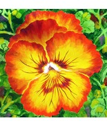 Akimova: RED PANSY, flower,floral, realism - $50.00