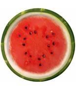 "Watermelon Check Summer Luau Beach Picnic Cookout Party 7"" Paper Dessert... - £5.14 GBP"