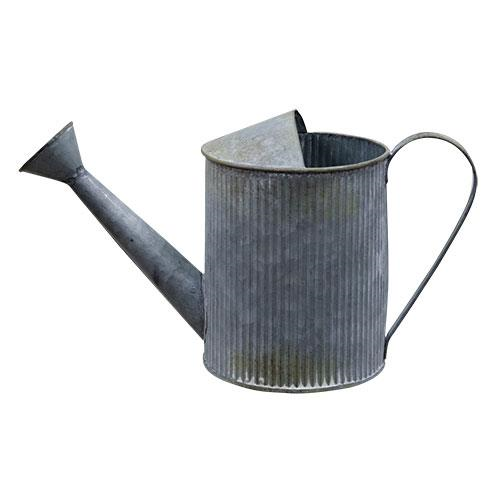 Galvanized Watering Can Garden Waterfall Flowerbed Spring
