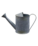 Galvanized Watering Can Garden Waterfall Flowerbed Spring - $39.59