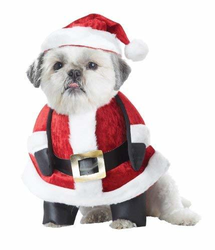 California Costume Collections Santa Pup Dog Costume, Small