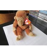 TY Beanie Baby , Original , BONGO , Style 4067 , 1995 TY INC. - $94.05