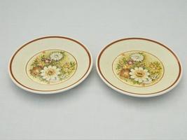 Temper-Ware by Lenox – 2 bread/butter plates – Magic Garden  - $9.50