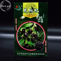 100% True Rare Black Goji Lycium Ruthenicum Murray Herb Seeds, 30 Fruit Seeds - $7.50