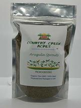 Arugula Seed, Arugula Sprouting Seeds, Microgreen, Sprouting, 6 OZ, Organic Seed - $11.99