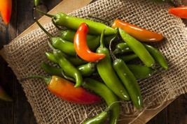 Pepper Serrano Hot Chili Non GMO Heirloom Spicy Vegetable Seeds Sow No G... - $1.97+