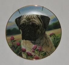 Prairie Pug Danbury Mint Plate Dog Flowers Field Simon Mendez Limited Edition - $15.83