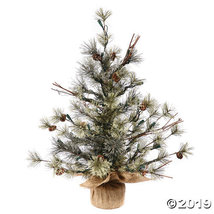 "Vickerman 36"" Dakota Pine Christmas Tree - Unlit - $56.50"