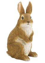 Curiously Cute Bunny Garden Figurine statue and outdoor lawn ornamment - $31.39