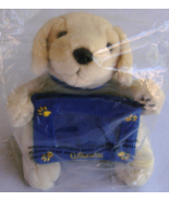 Golden Labrador Retriever With Picture Frame Plush NIP Cottonelle Promot... - $21.99