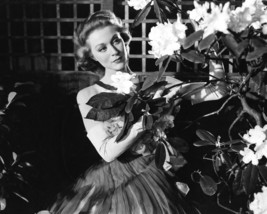 Moira Shearer in The Man Who Loved Redheads portrait with flowers 16x20 ... - $69.99