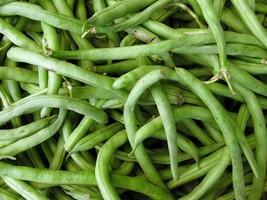 Bean Pole Kentucky Wonder Non GMO Heirloom Garden Vegetable Seeds Sow No... - $3.95+