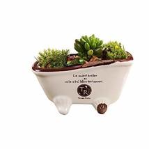 SweetLifeIdea Ceramic Bathtub Flower Planter Succulent Plant Pot White - $20.91 CAD