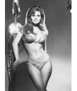 RAQUEL WELCH POSTER 24X36 SEXY PIN-UP 1960s BRA&PANTIES AS LILLIAN LUST ... - $39.99