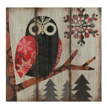 "Raz 13.75"" Alpine Chic Wide - Eyed Owl in Woods Snowflakes Wall Art Plaque - €26,90 EUR"