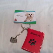 Little Gifts Key Chain Charm Set